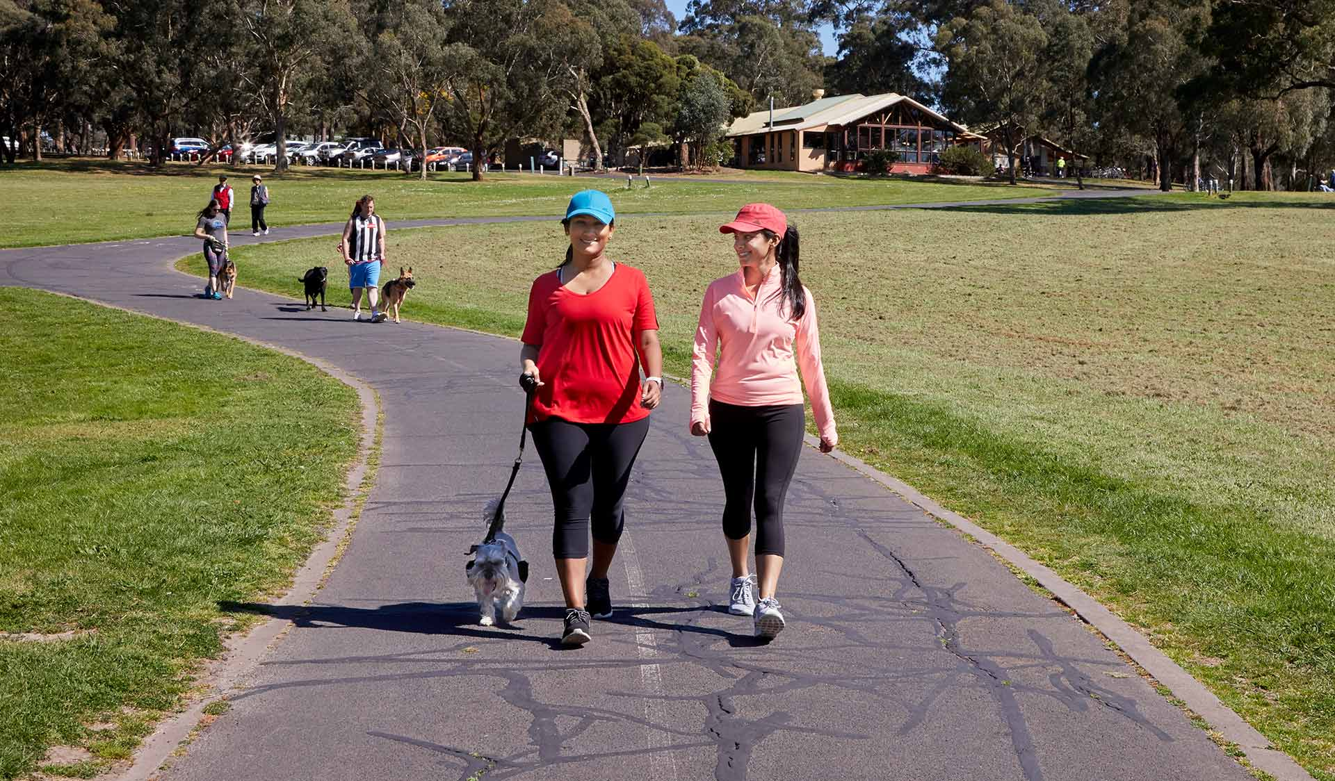 A woman and friend in activewear walking a small dog at Jells Park
