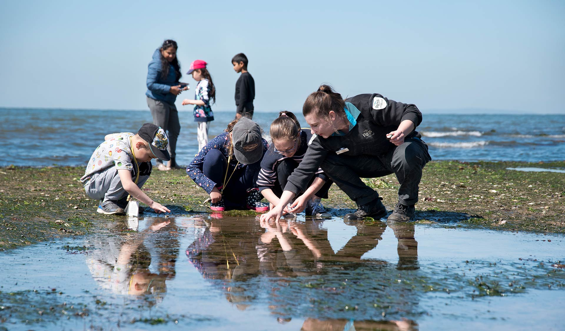 Four children and a ranger take a closer look at a rockpool.