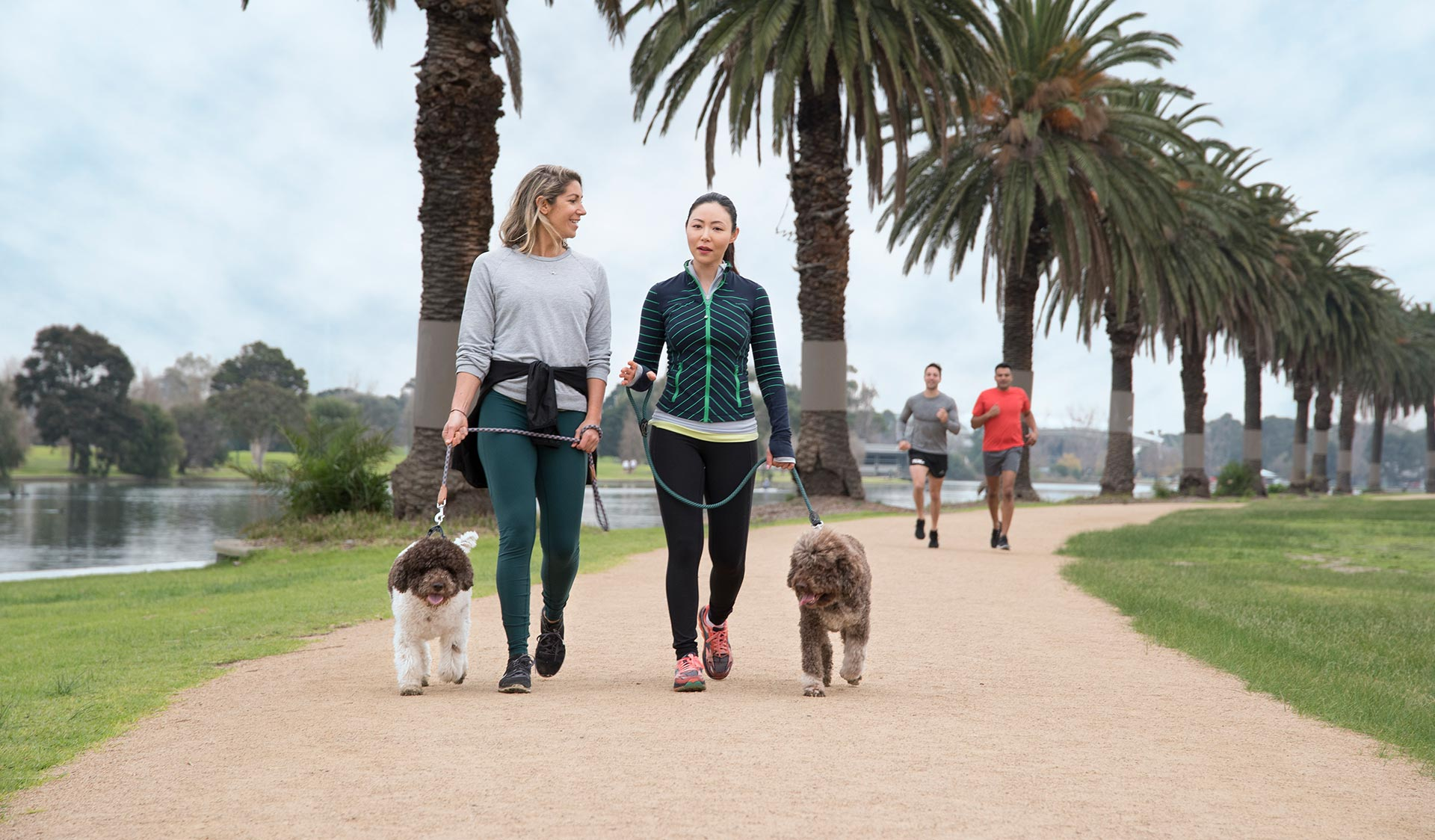 Two women in activewear walk their dogs while two runners approach them.