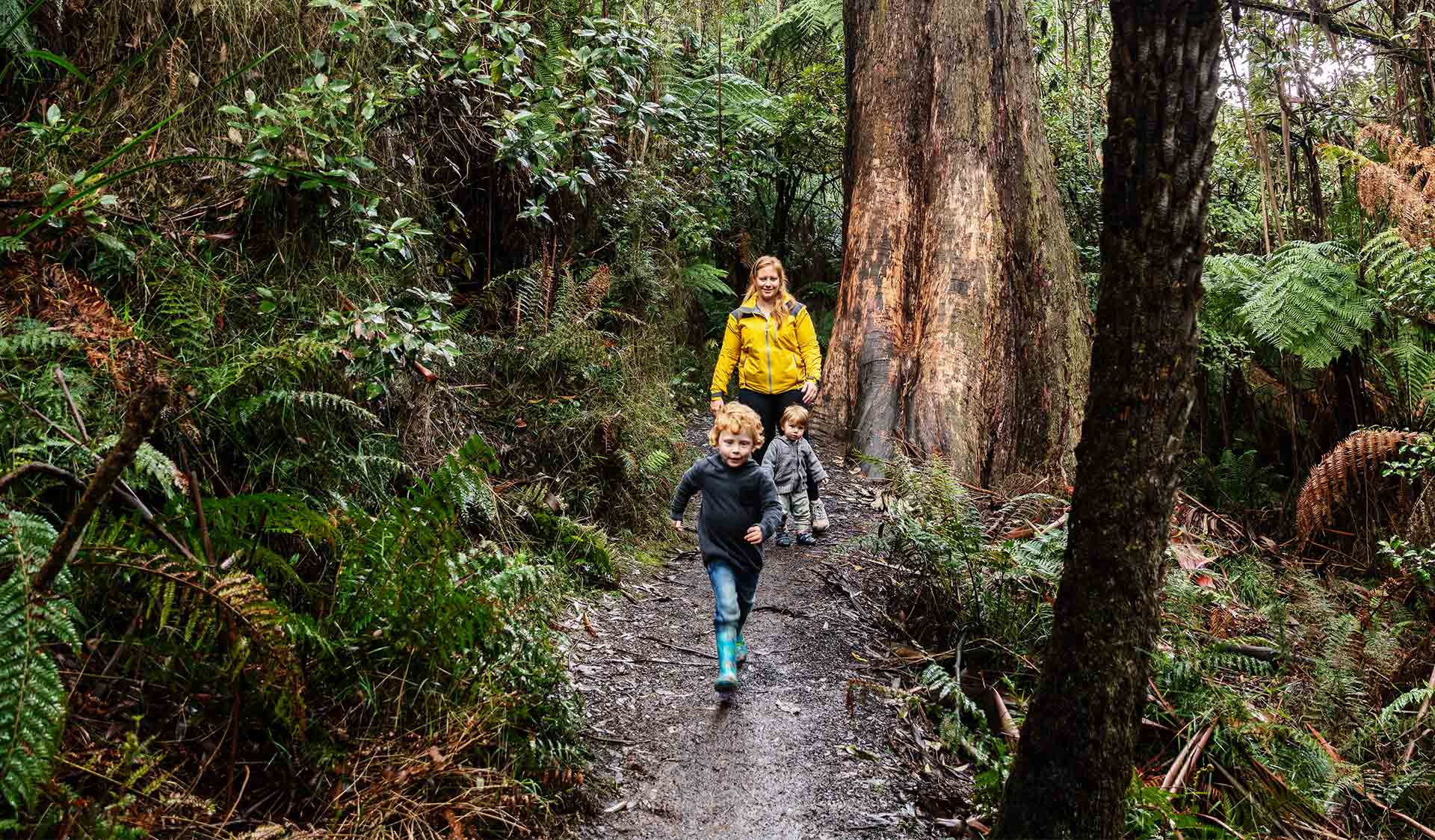 A three year old boy leads his mum and younger brother through the forest near Grants Picnic Ground.