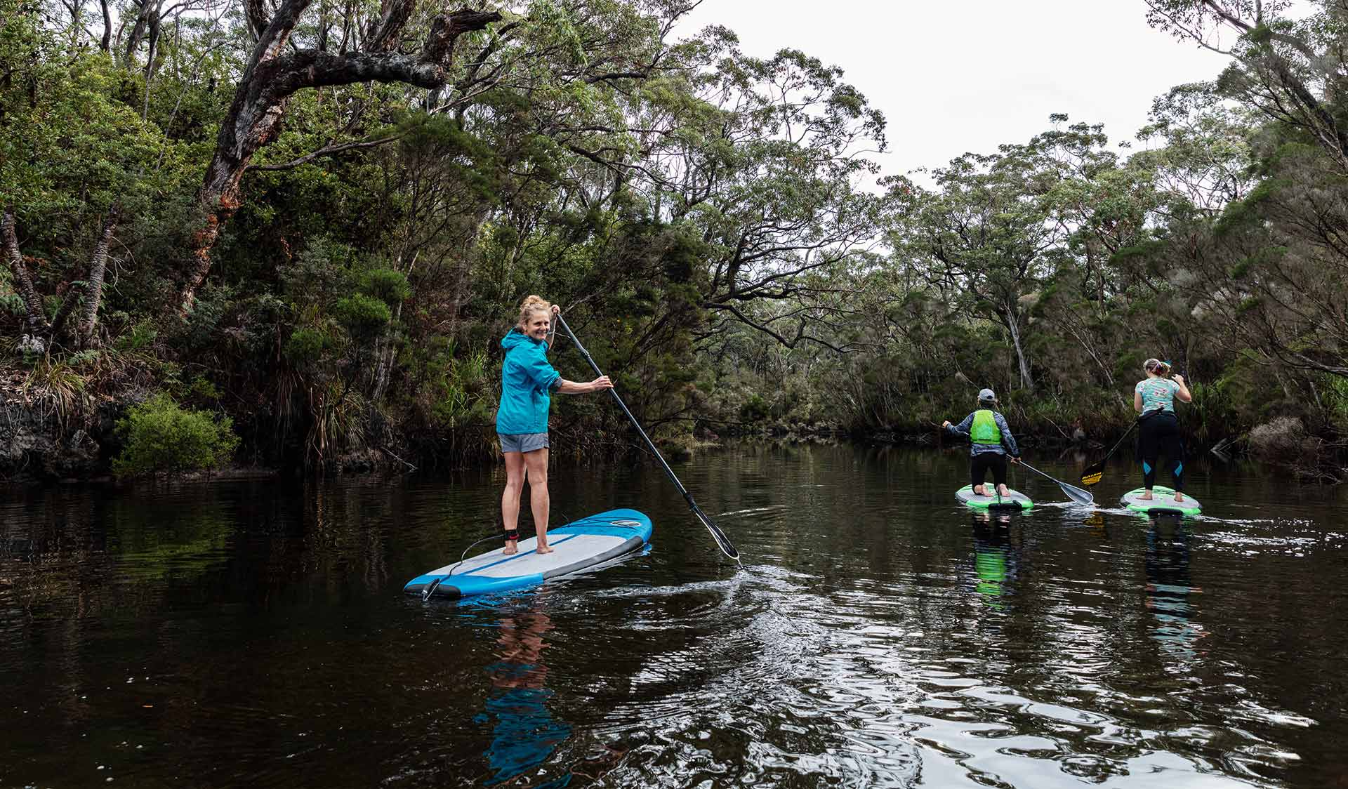 Three women on stand-up paddle boards paddle up the Yeerung River.