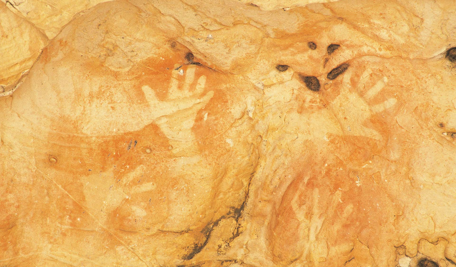 Aboriginal rock art at Gulgurn Manja Shelter in the Grampians National Park.
