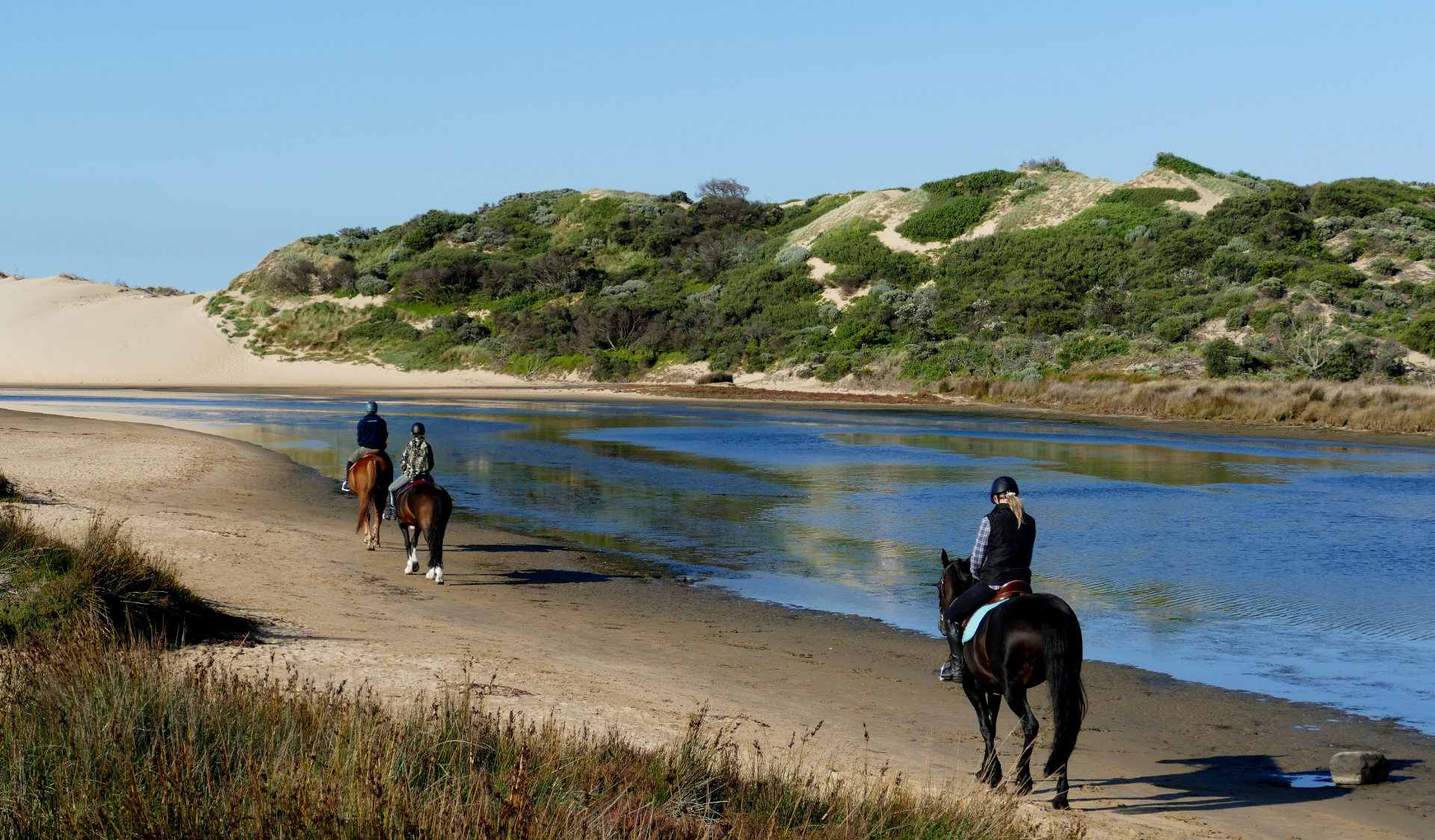Three people ride horses along Powlett River in Yallock Bulluk Marine and Coastal Park
