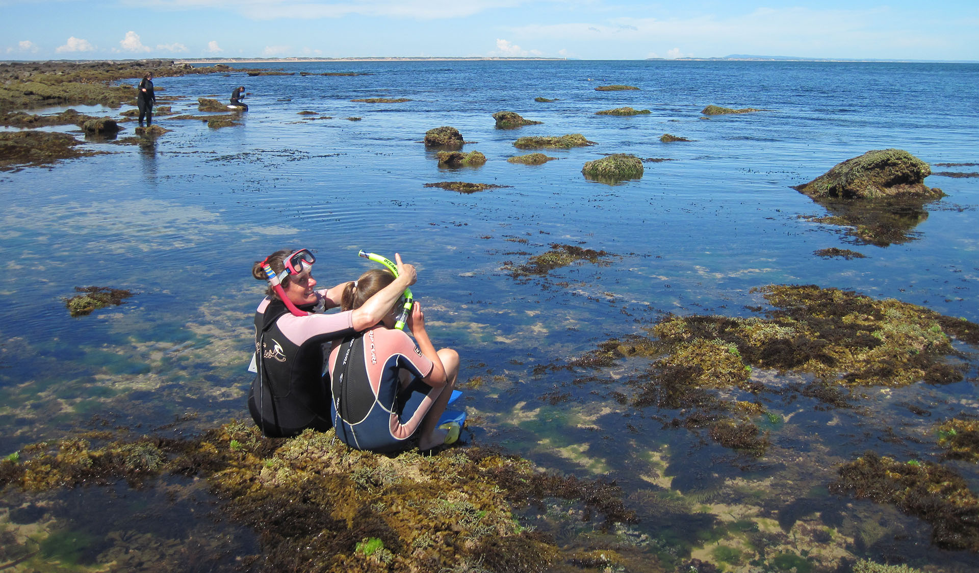 Snorkelling at Barwon Bluff Marine Sanctuary