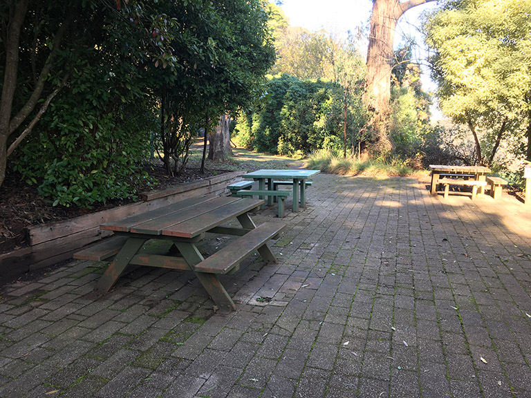 Picnic tables at Tolurosa Picnic Ground