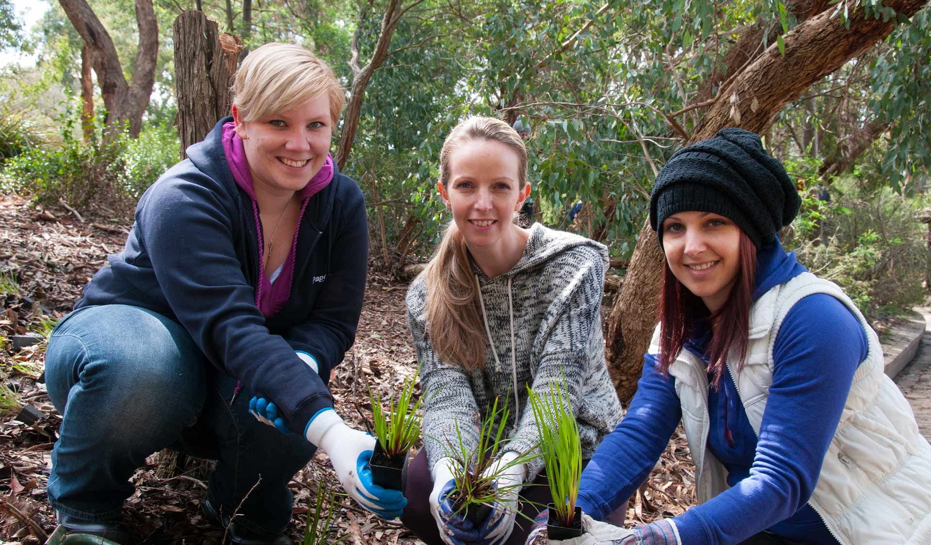 Three women in casual clothing holding seedlings