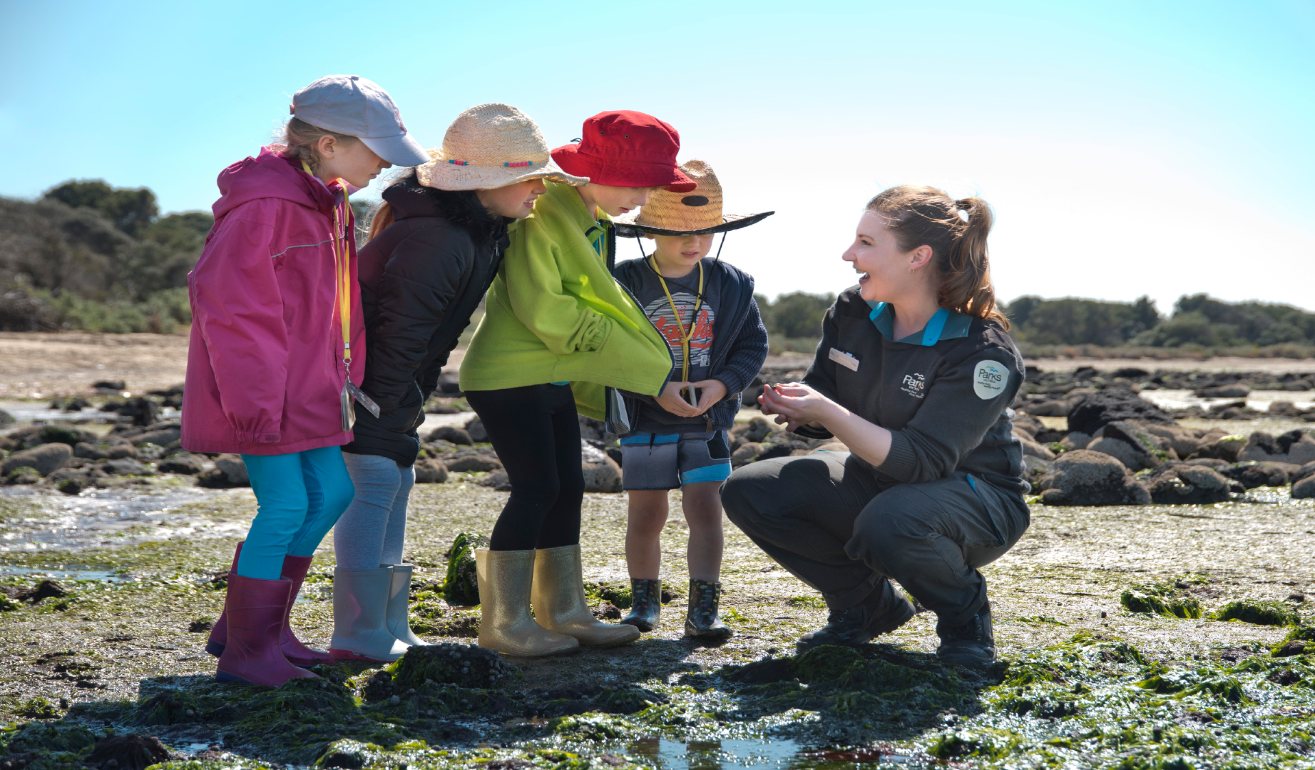 Ranger crouching next to rock pool showing four Junior Ranger children a shell