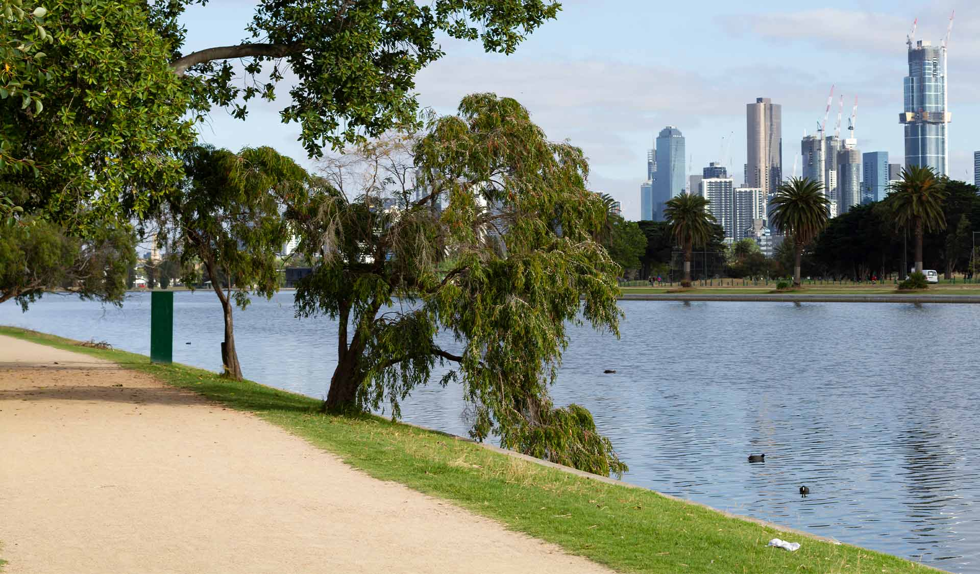 A walking path alongside Albert Park Lake with the Melbourne CBD skyline in the background