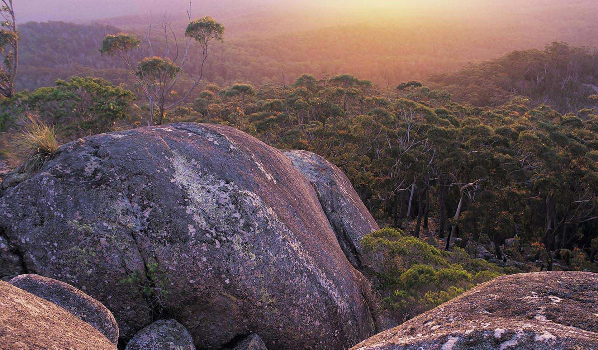 The view from Genoa Peak at sunset in the Croajingolong National Park near Mallacoota.