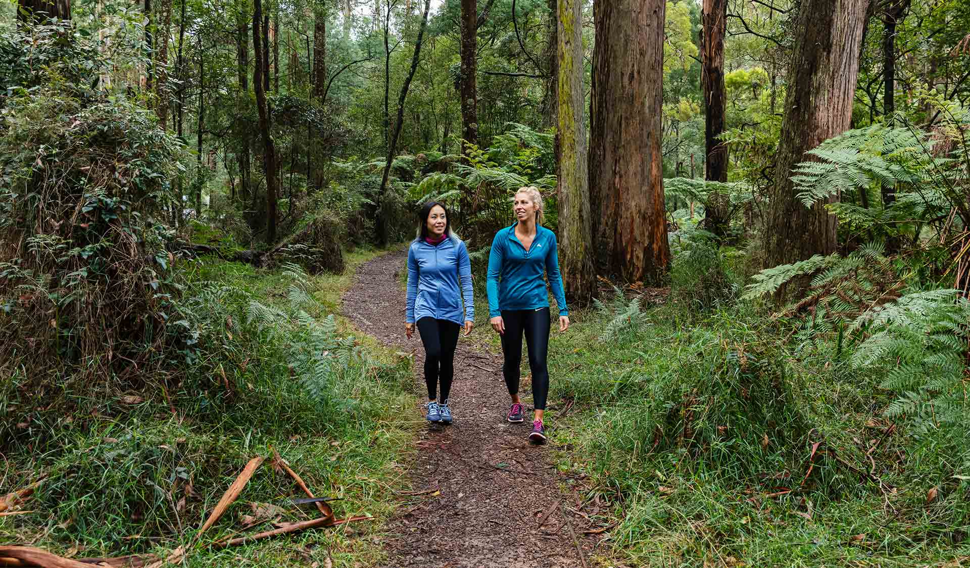 Two women in activewear follow a path through tall mountain ash trees.