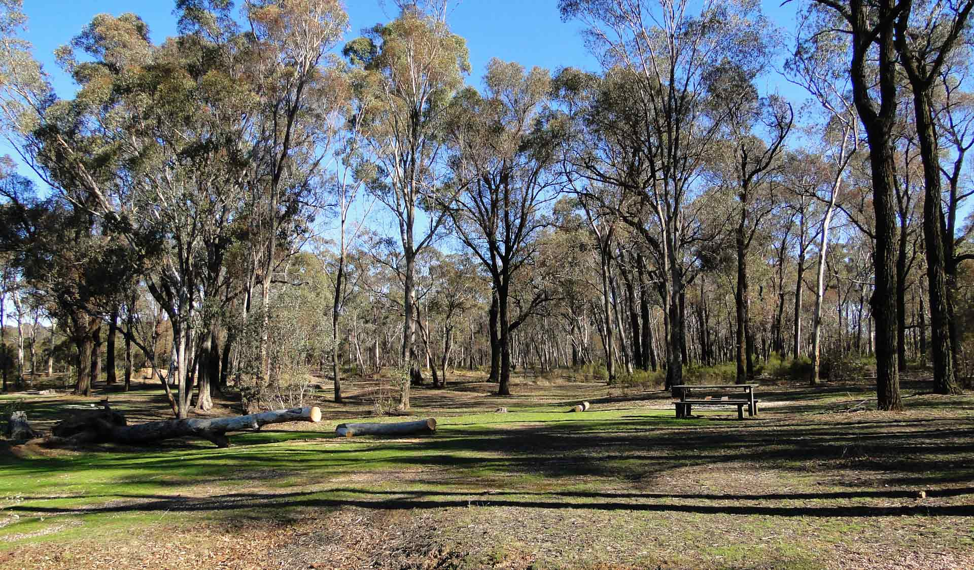 Notley Picnic Ground in the Greater Bendigo National Park
