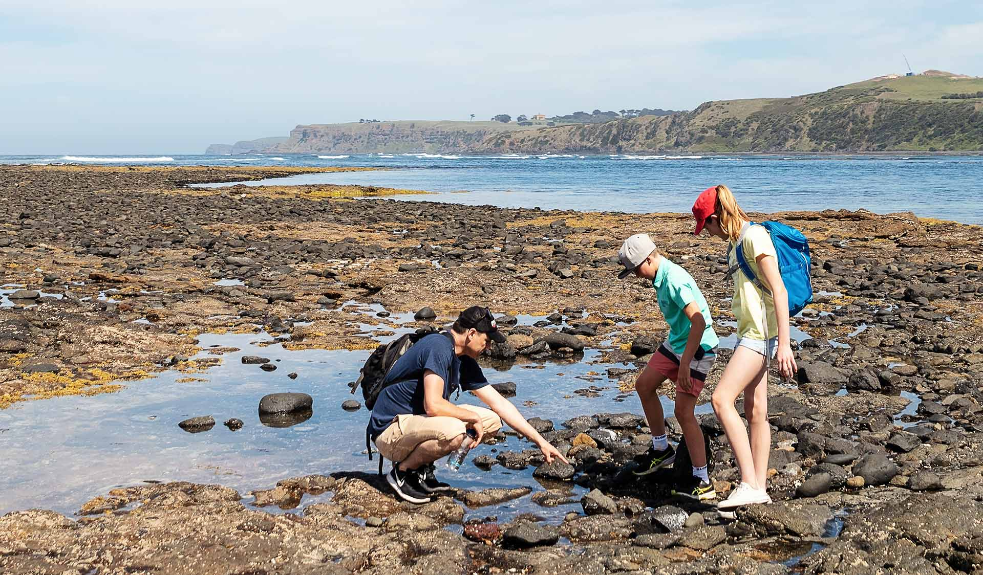 A man pointing at the rockpools with two children at Mushroom Reef