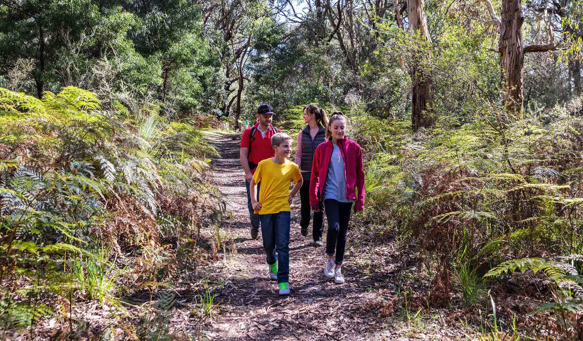 A family of four walking along a track at Baldrys Crossing in Mornington Peninsula National Park