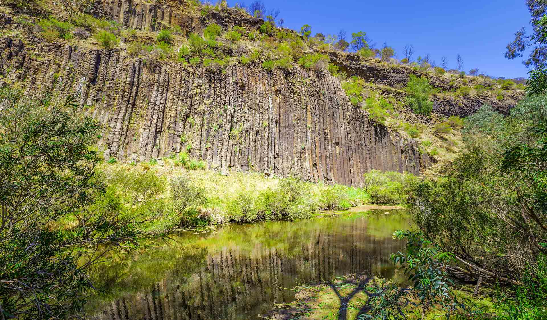 The rock formation know as the Organ Pipes from which the national park is named