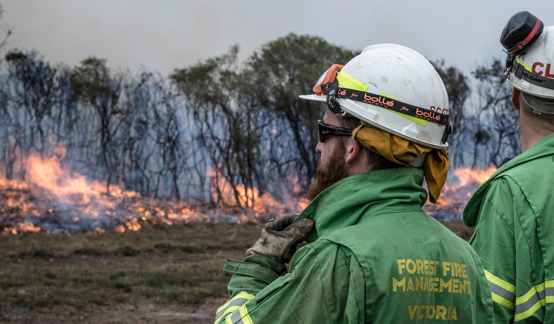 Forest Fire Management team
