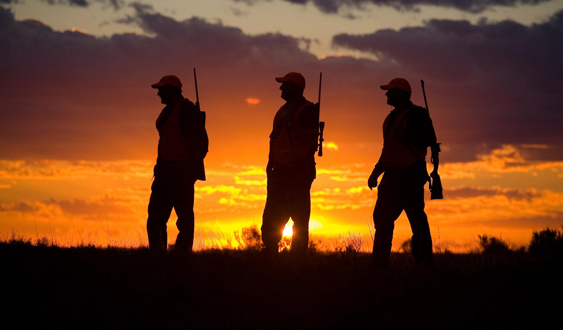 Lov na slikama i videu - Page 11 3-hunting-murray-sunset-national-park-1920x1124
