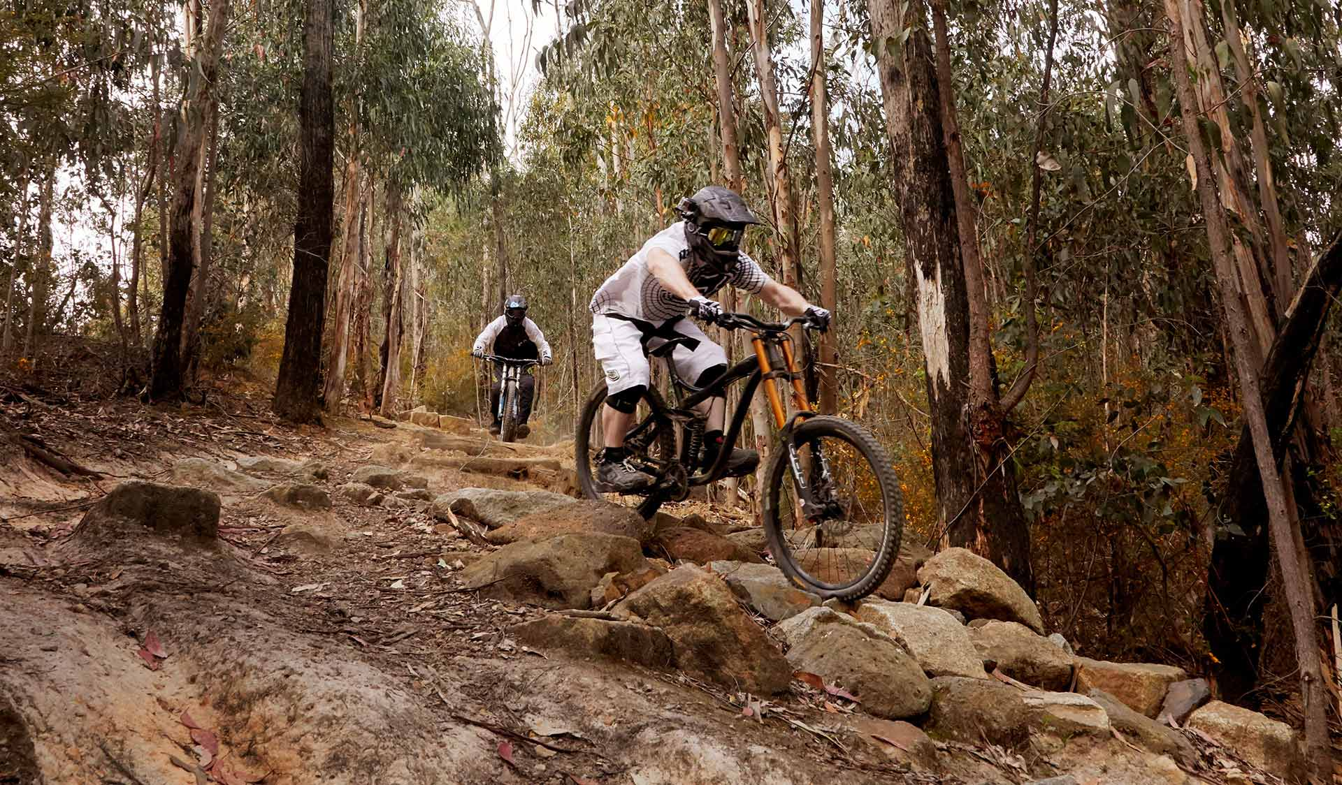 Two downhill mountain bikers descend Bowden Hill in Kinglake National Park.